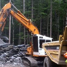 excavator clearing timber